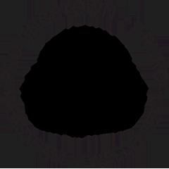 Ptown Indie Logo